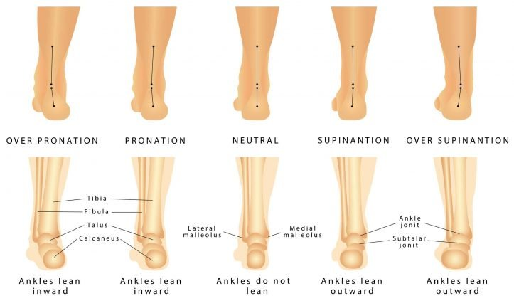 Image of Right Foot Showing Pronation & Supination